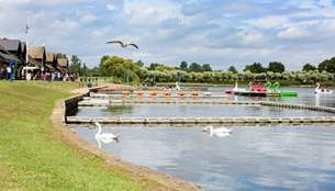 Willen Lake with Swan and Dragon Pedalos on